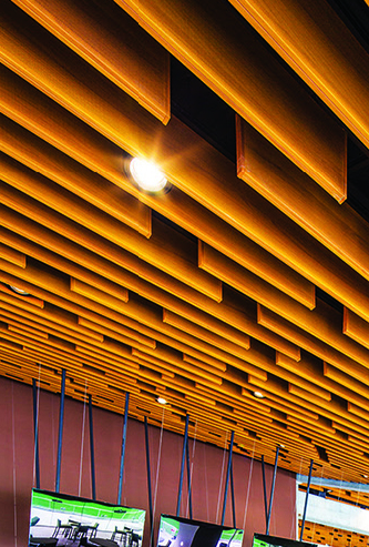 تنوع رنگ سقف کاذب